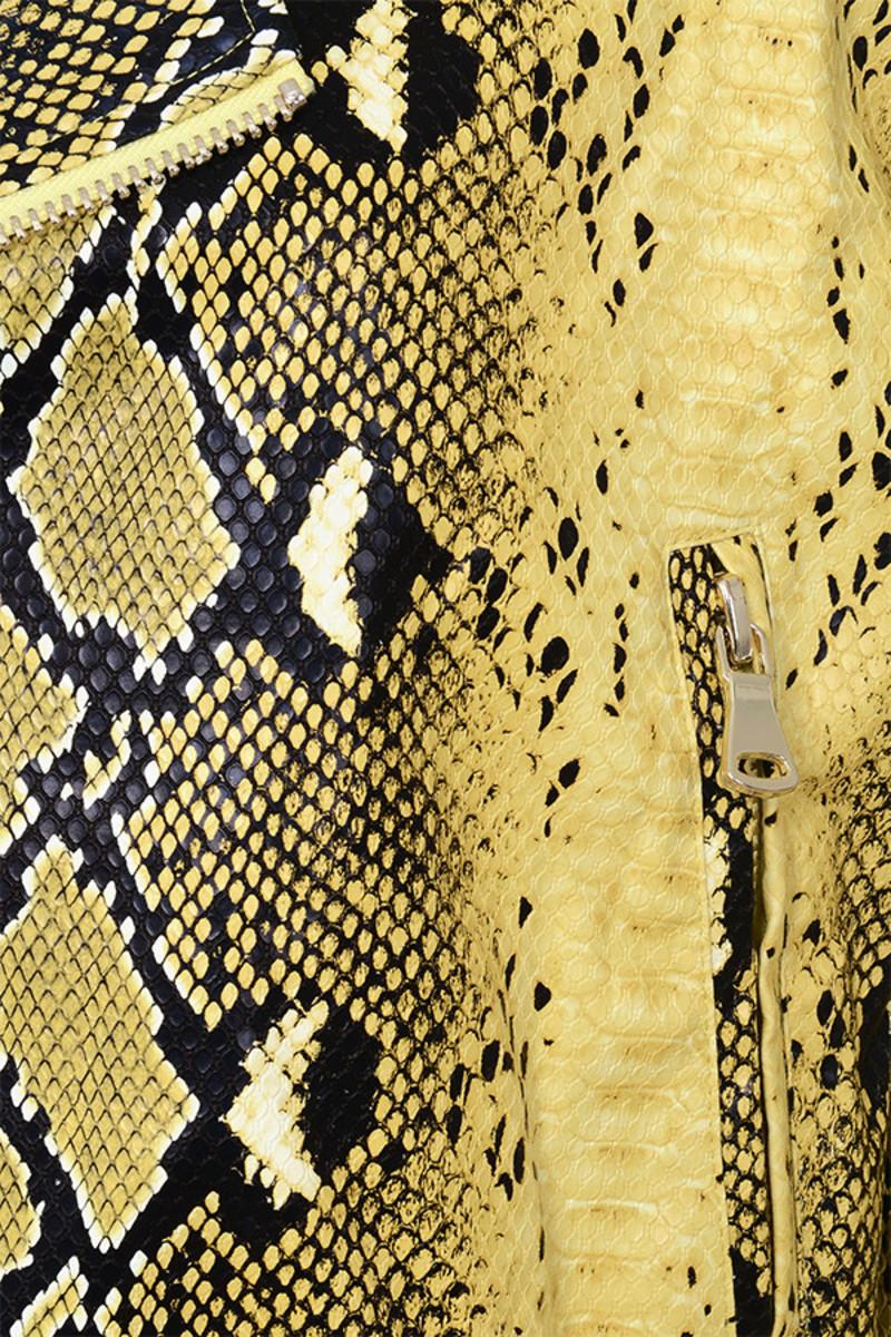 jacket snakeskin princeton