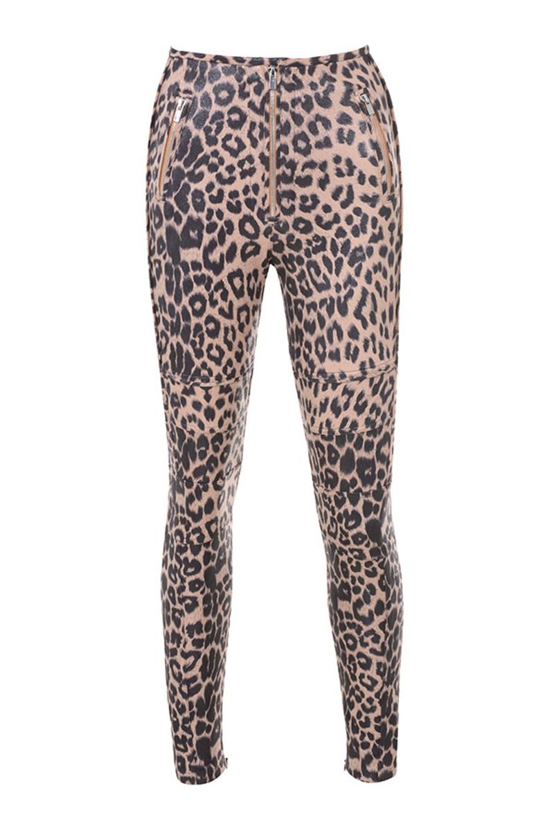 written leopard
