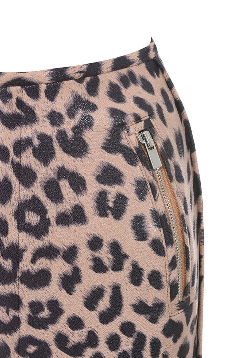 leopard written
